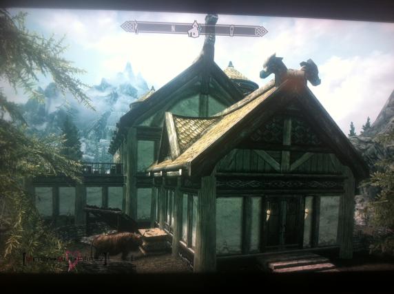 Skyrim House
