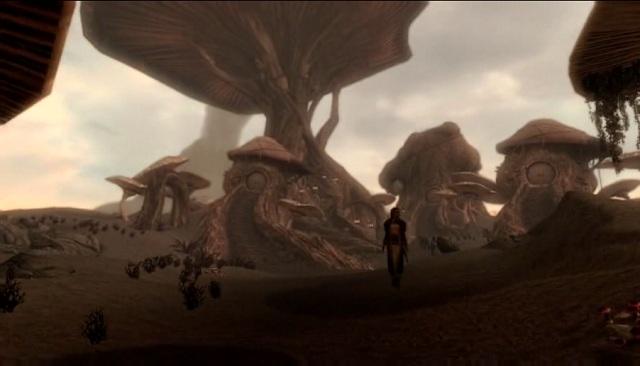 dragonborn mushroom