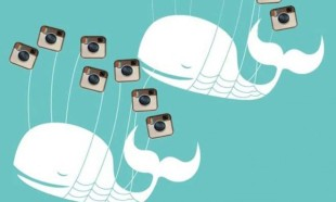 twitter, facebook, instagram, fail whale