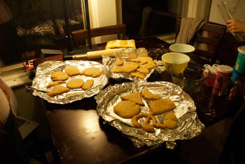 All Blank Cookies