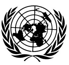 UN.logo_